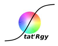 Stat'Rgy Logo